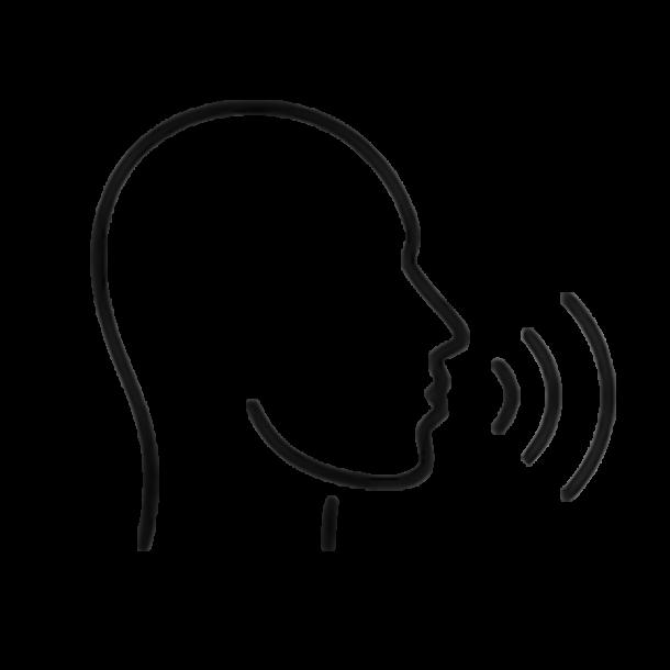 онлайн курс сила голоса, Сила голоса, вокальный курс сила голоса